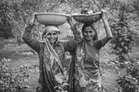 CHARCHA 2020: INFORMAL WORKERS AND THE CITY